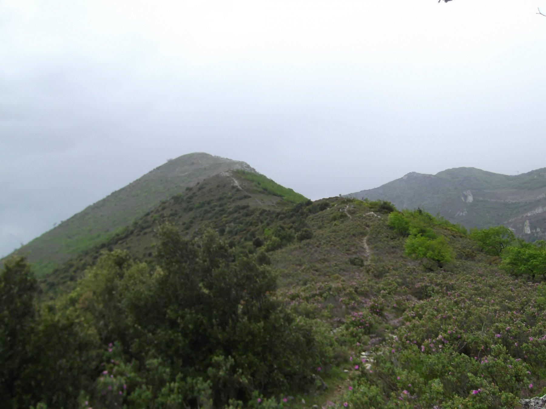 Direzione Monte Pesalto con ancora nubi e pioviggine.