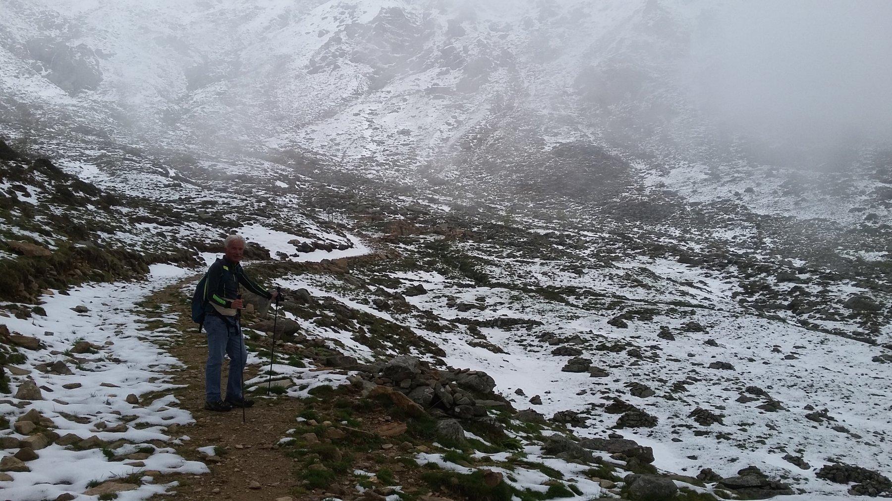 appena sopra l'Alpe Vallossera