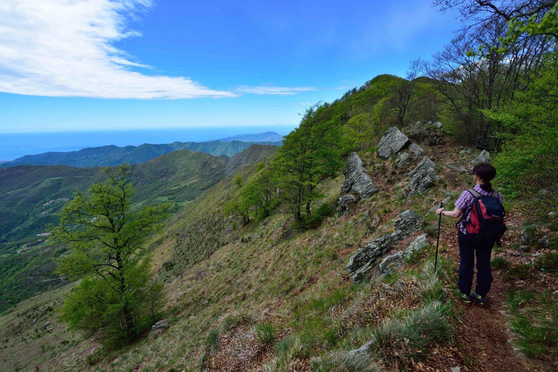 Sulla cresta Est del Ramaceto