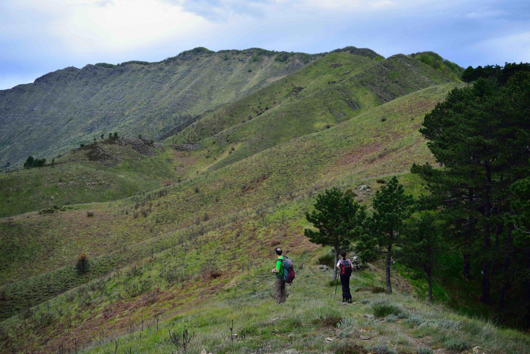 La cresta del Ramaceto dalla sella sotto il M.Cucco