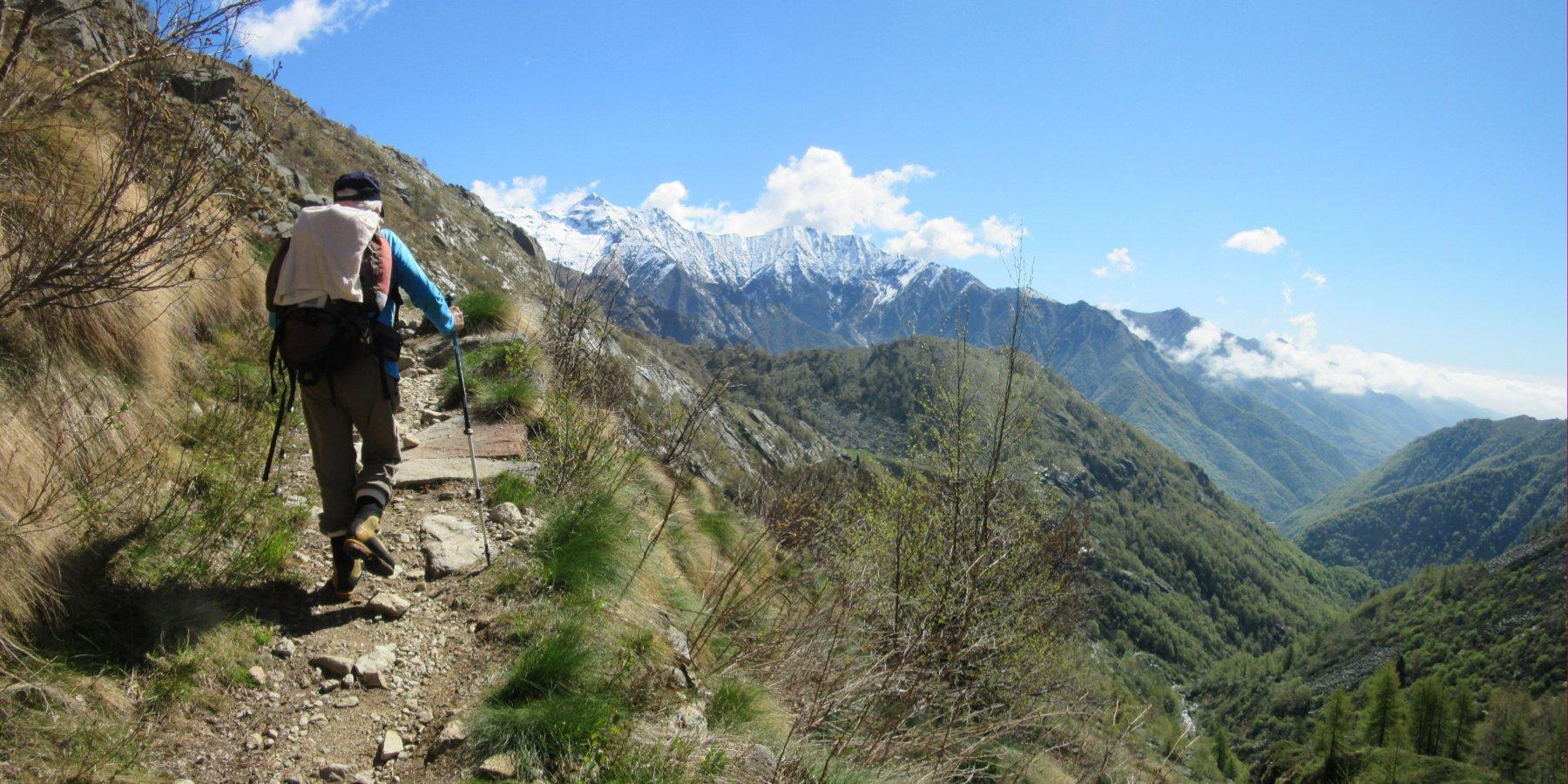 Salendo sulla bella mulattiera con sullo sfondo il Monte Bo