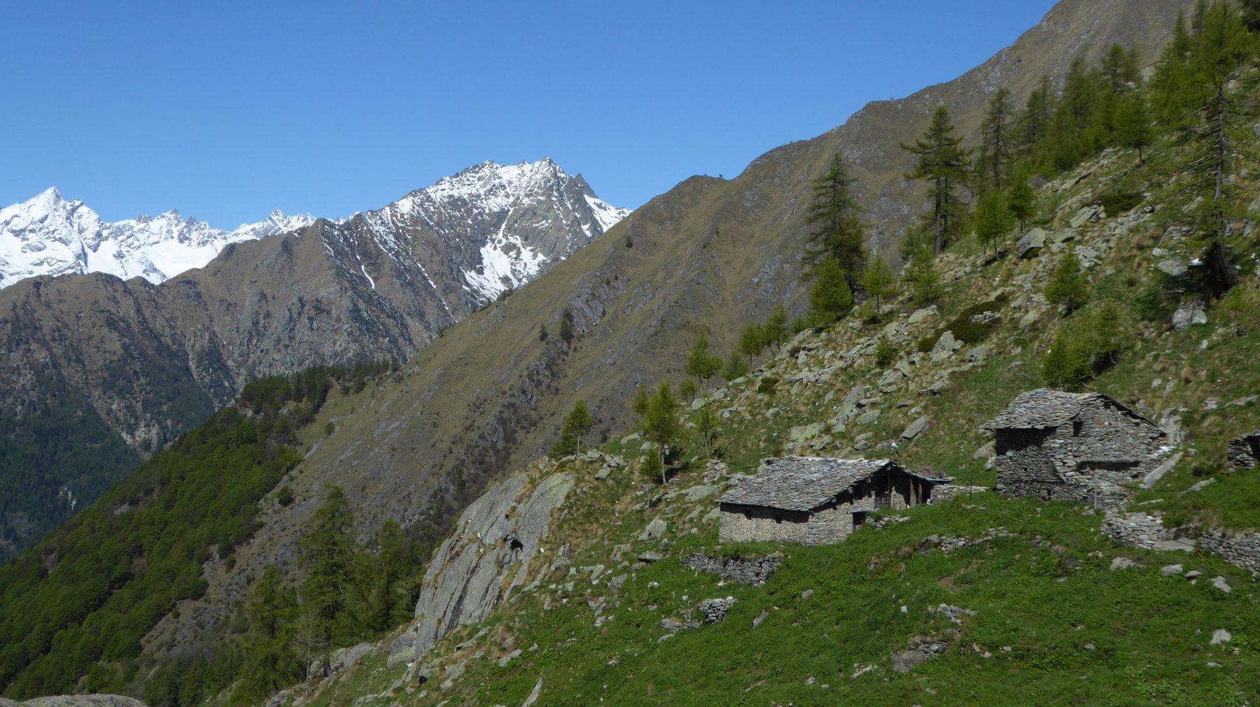 Alpe Ghiavin