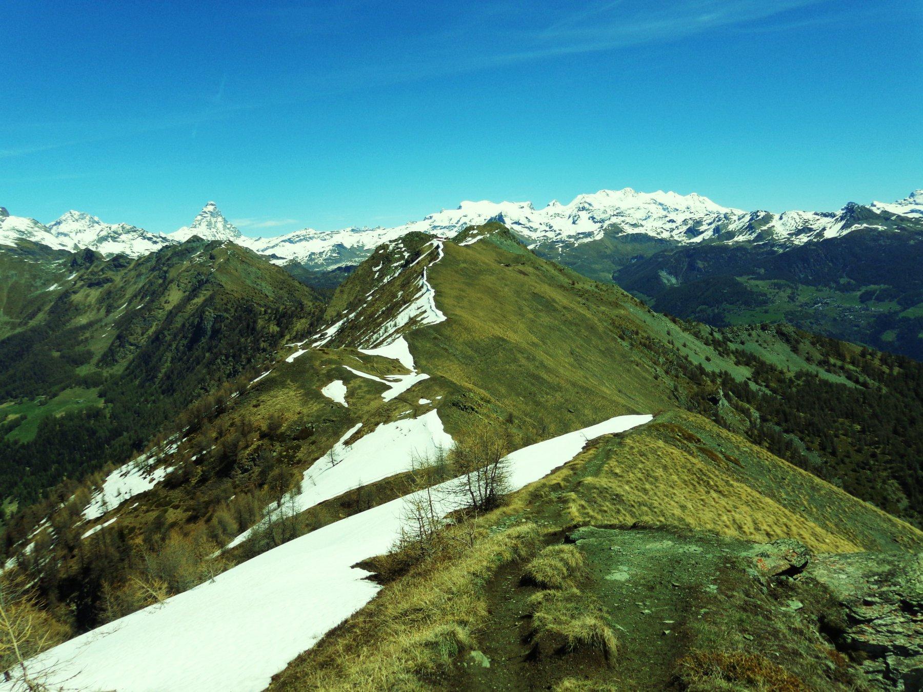 Sguardo verso la Becca d'Aver , Monte Rosa e Cervino da Cima Longhede