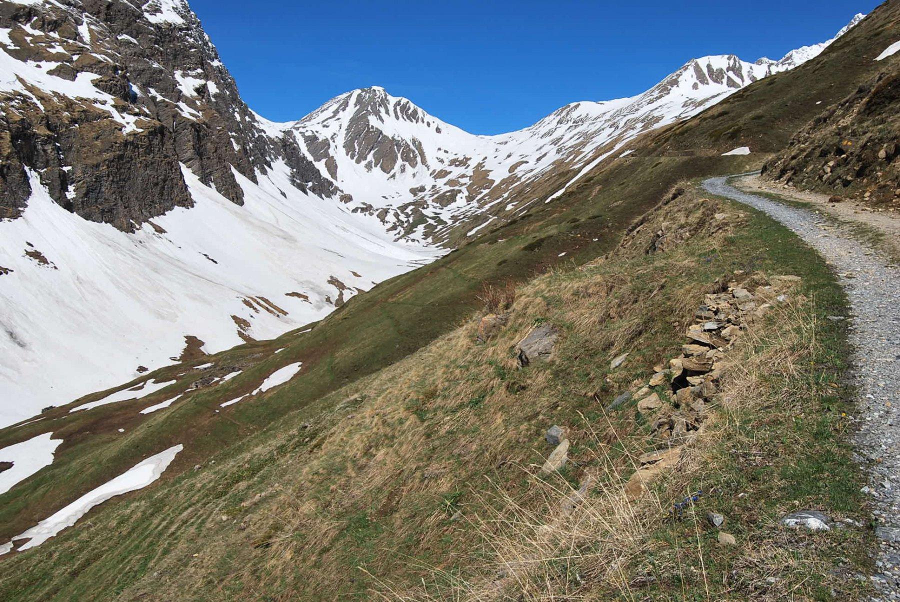 Il colle di Chavannes visto dai pressi degli alpeggi di Berrio Blanc desot: la traccia della strada è sempre evidente