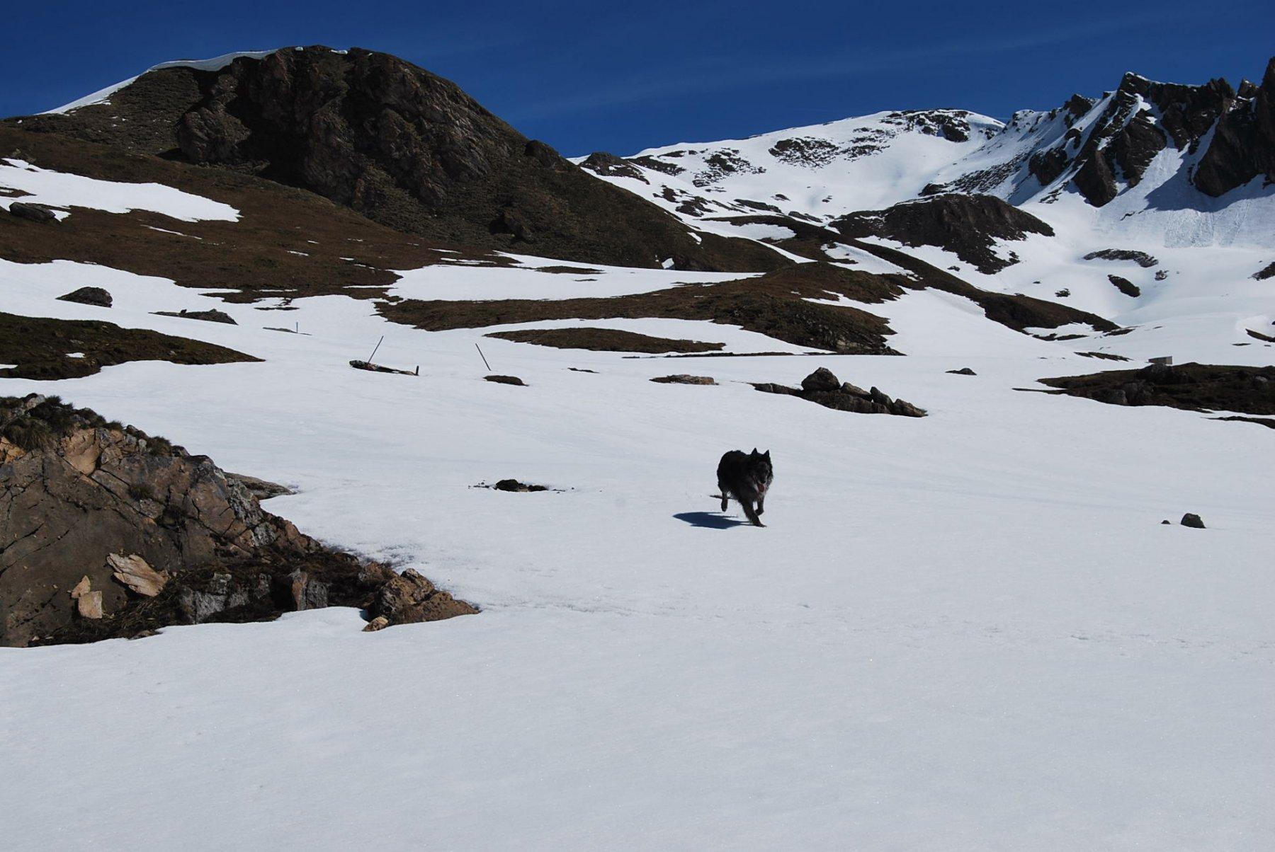 A Chavannes d'en haut dove comincia la neve continua