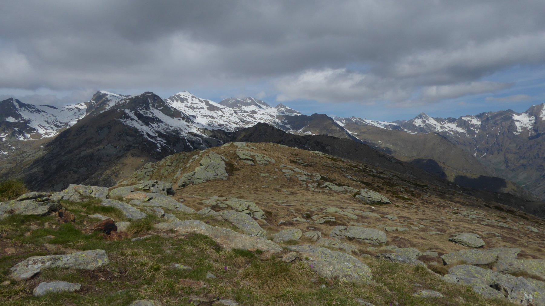 Panorama dal Monte Lion