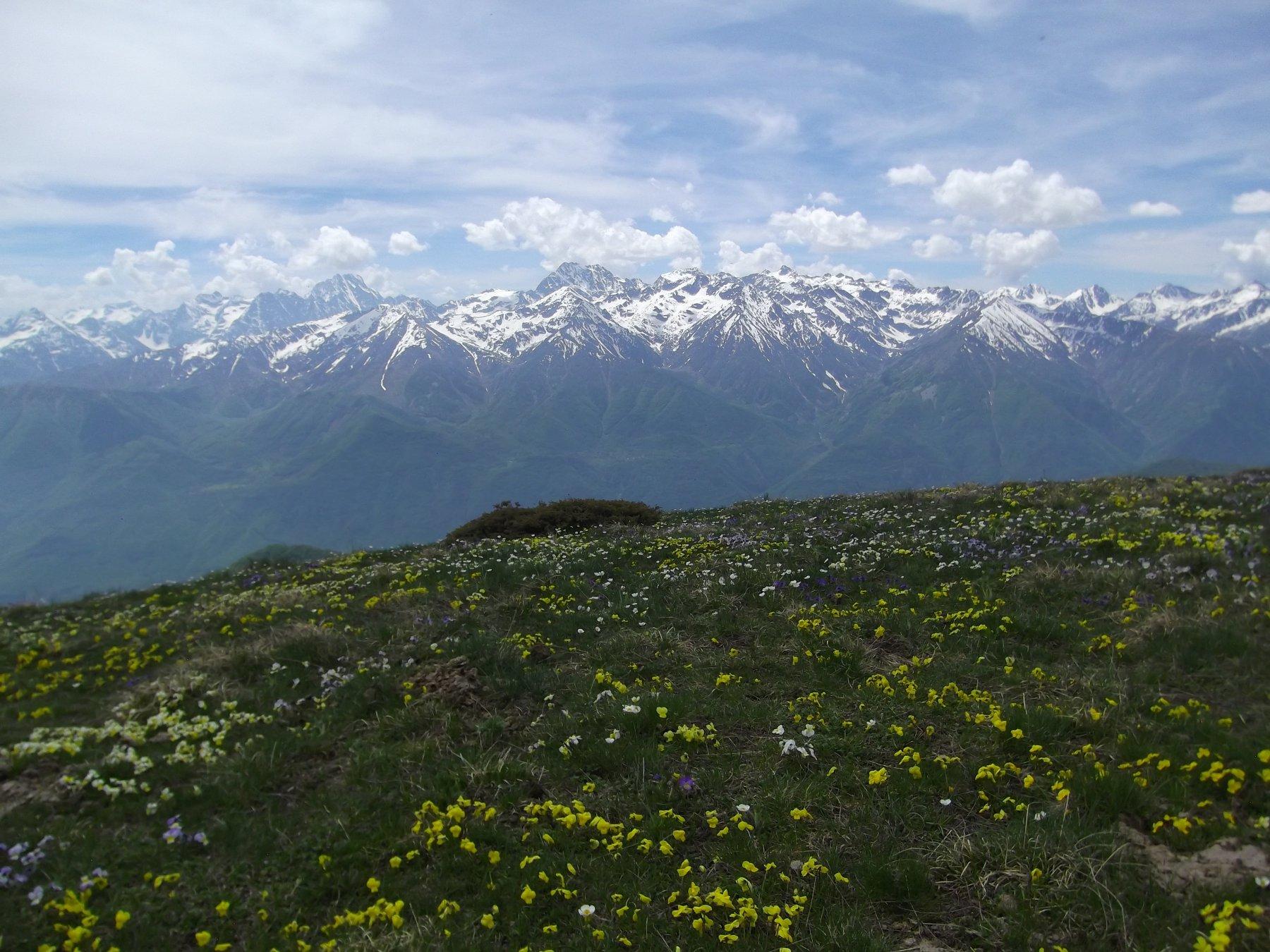 Monte Prapian.