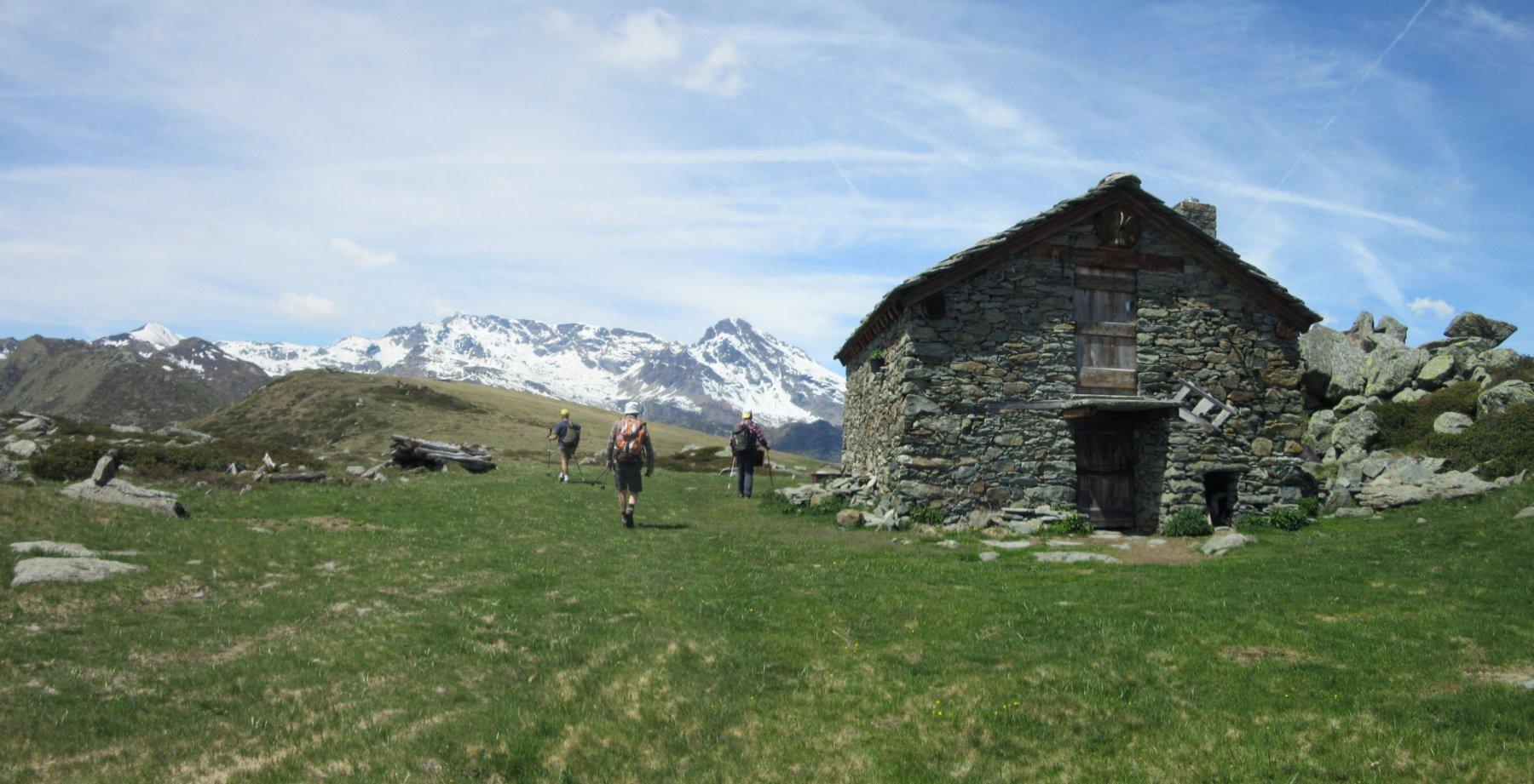I bei ripiani prativi dell'Alpe del Conte