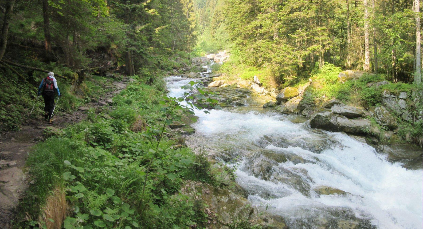 IL sentiero costeggia  il torrente Artogna