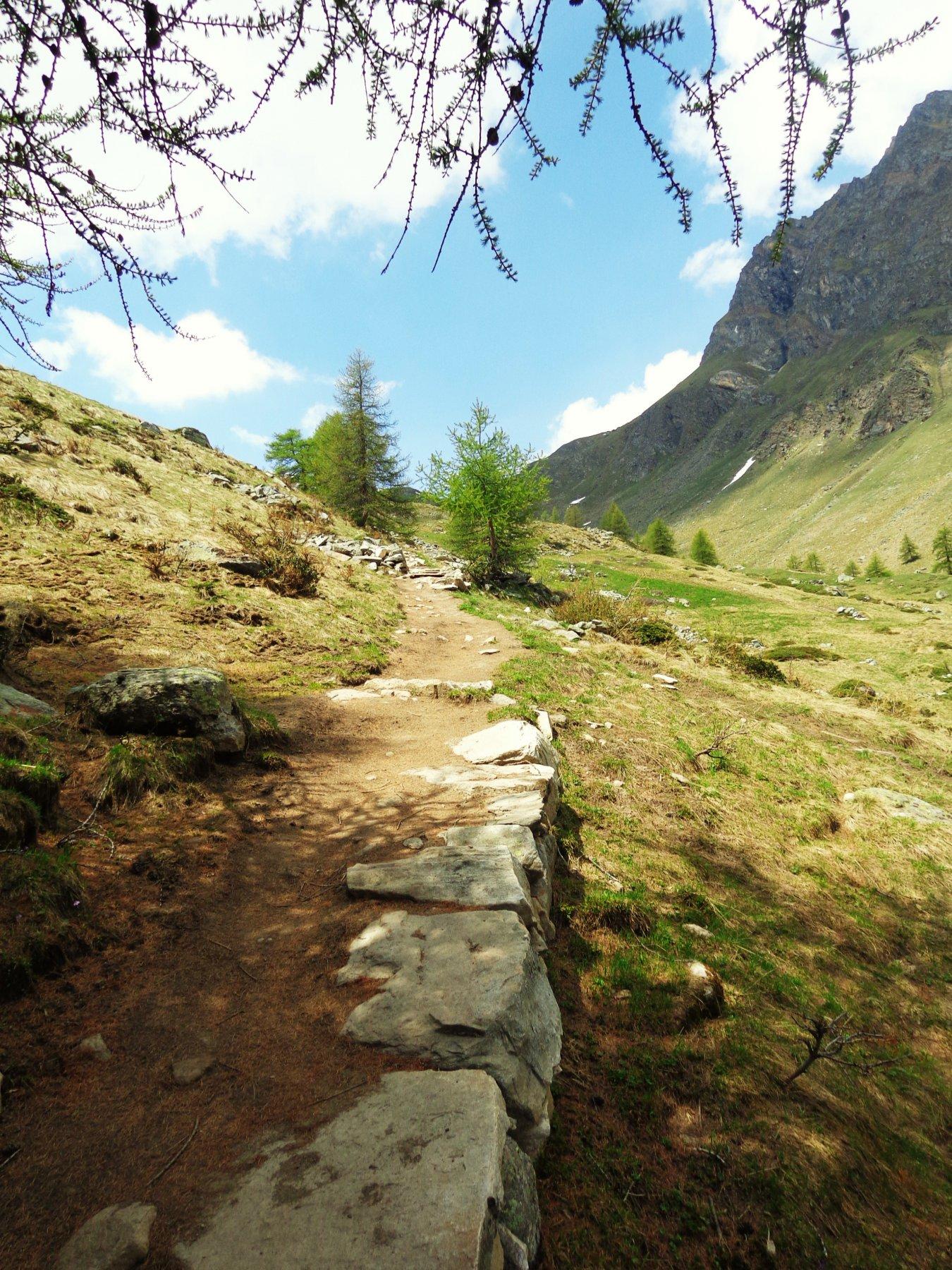 Sentiero nuovo bello largo