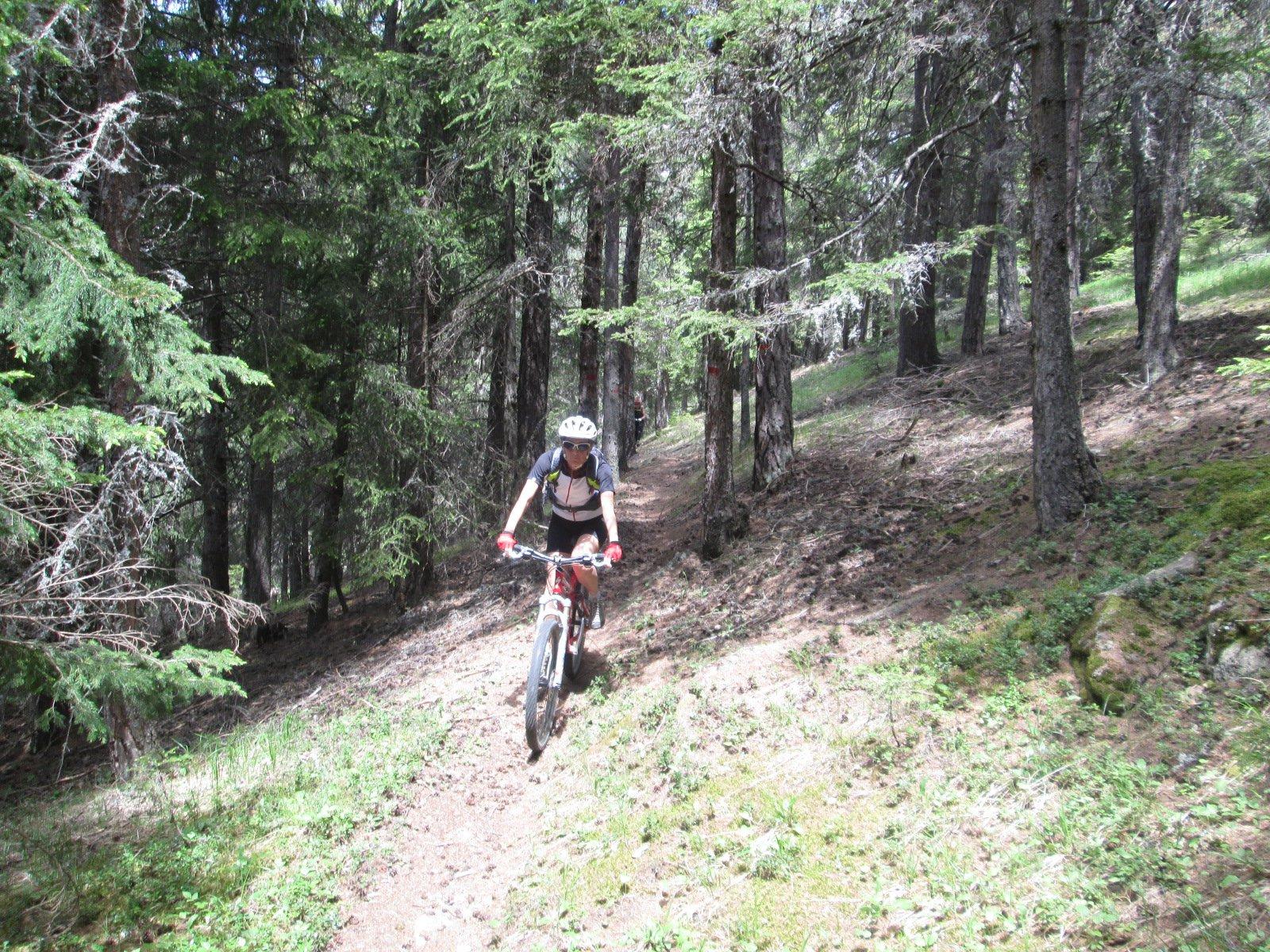 il sentiero pianeggiante tra Brin e Turlin