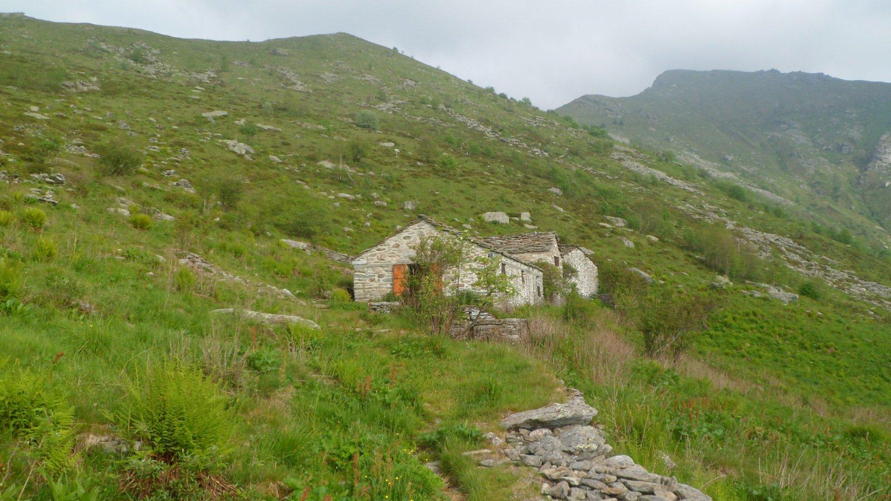 Alpe Fontanile