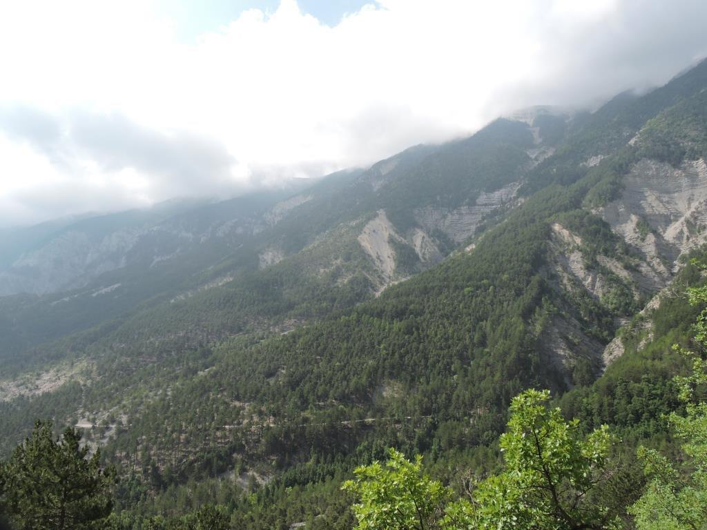 Forêt Domaniale du Toulourenc