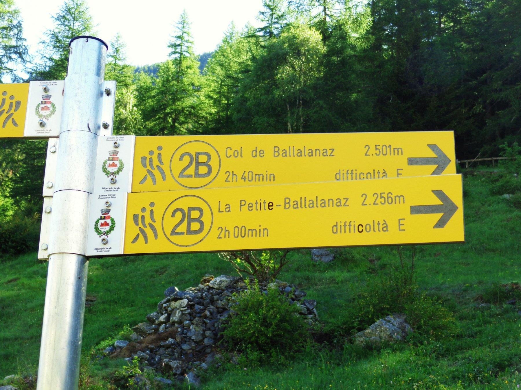 Altre indicazioni prima di entrare nel bosco