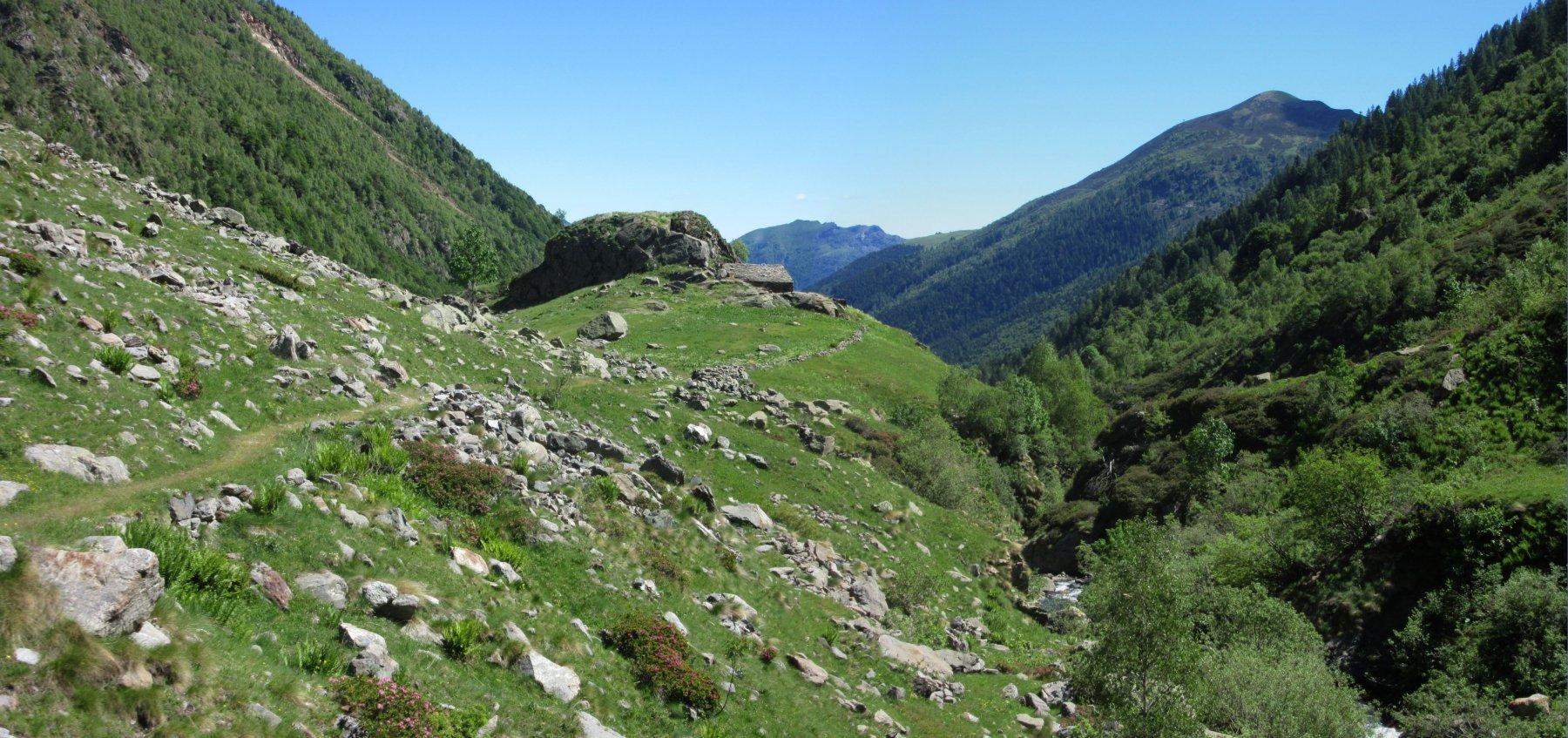 Alpe Massucco