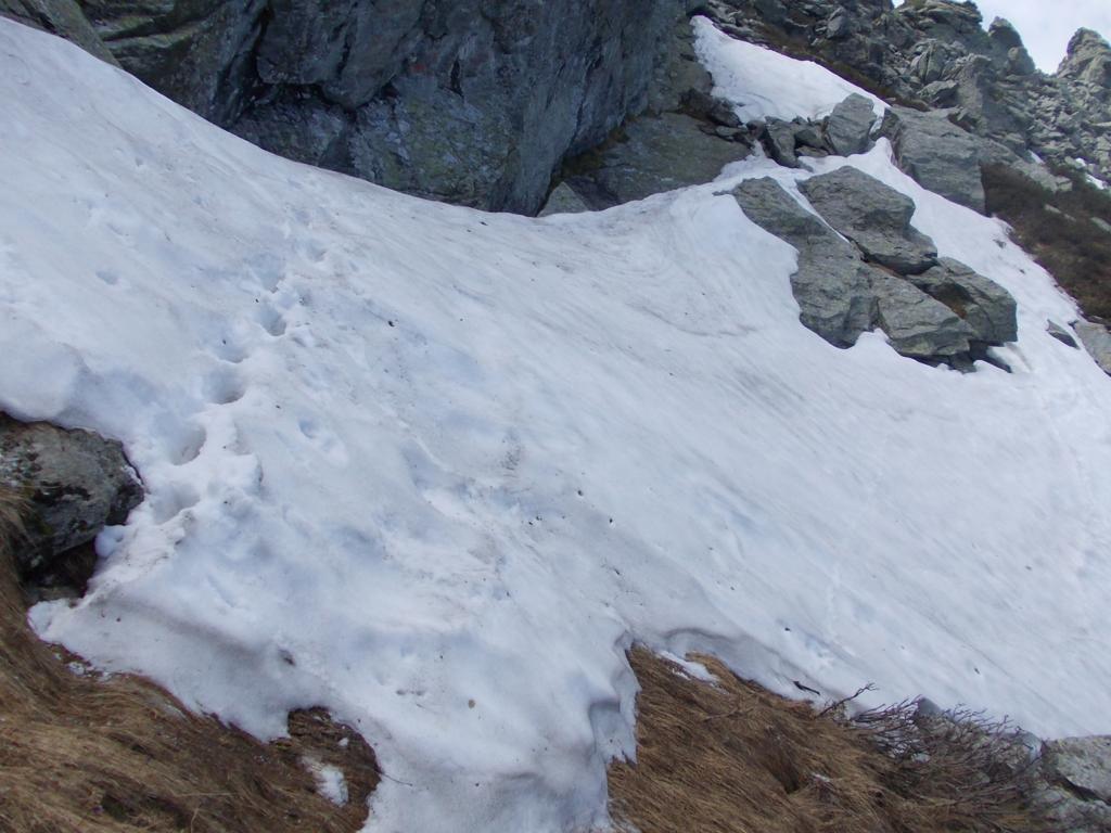 lingua di neve da attraversare