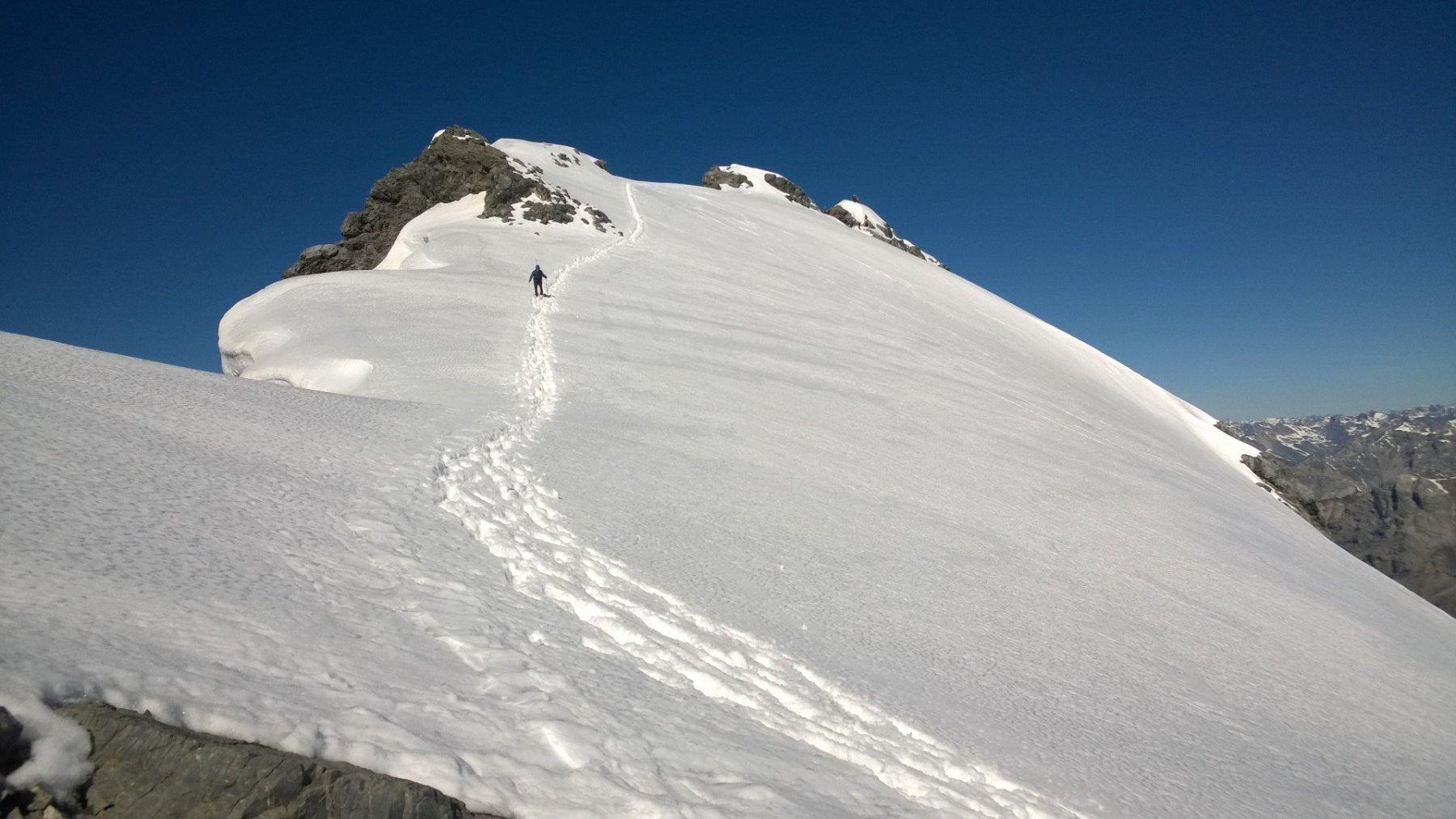 Monte Cristallo: Cresta Est.
