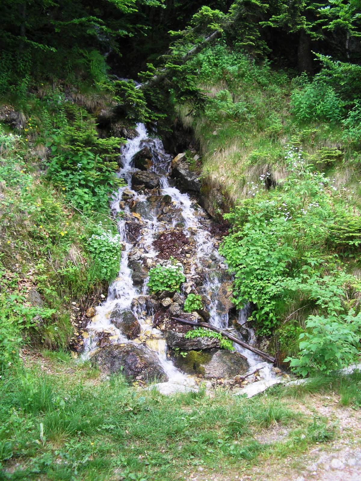 Ruscello nel tratto tra Colle del Prel e Monte Moro