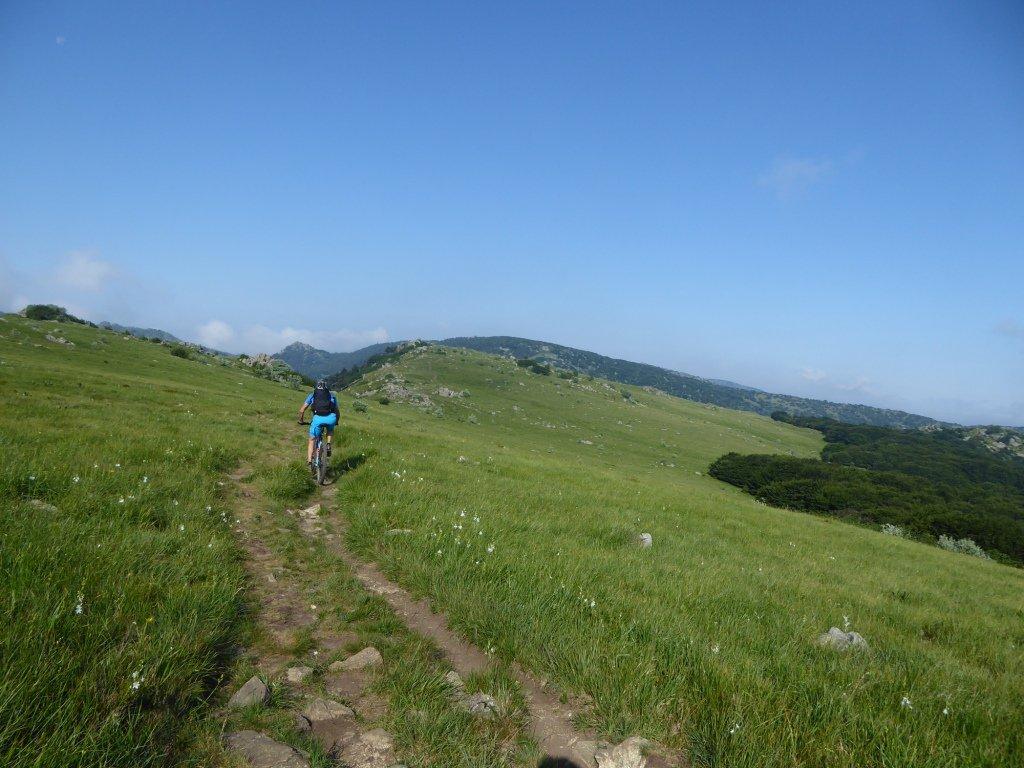 Alta Via Monti Liguri Tappa 4: Savignone - Sassello 2017-06-15