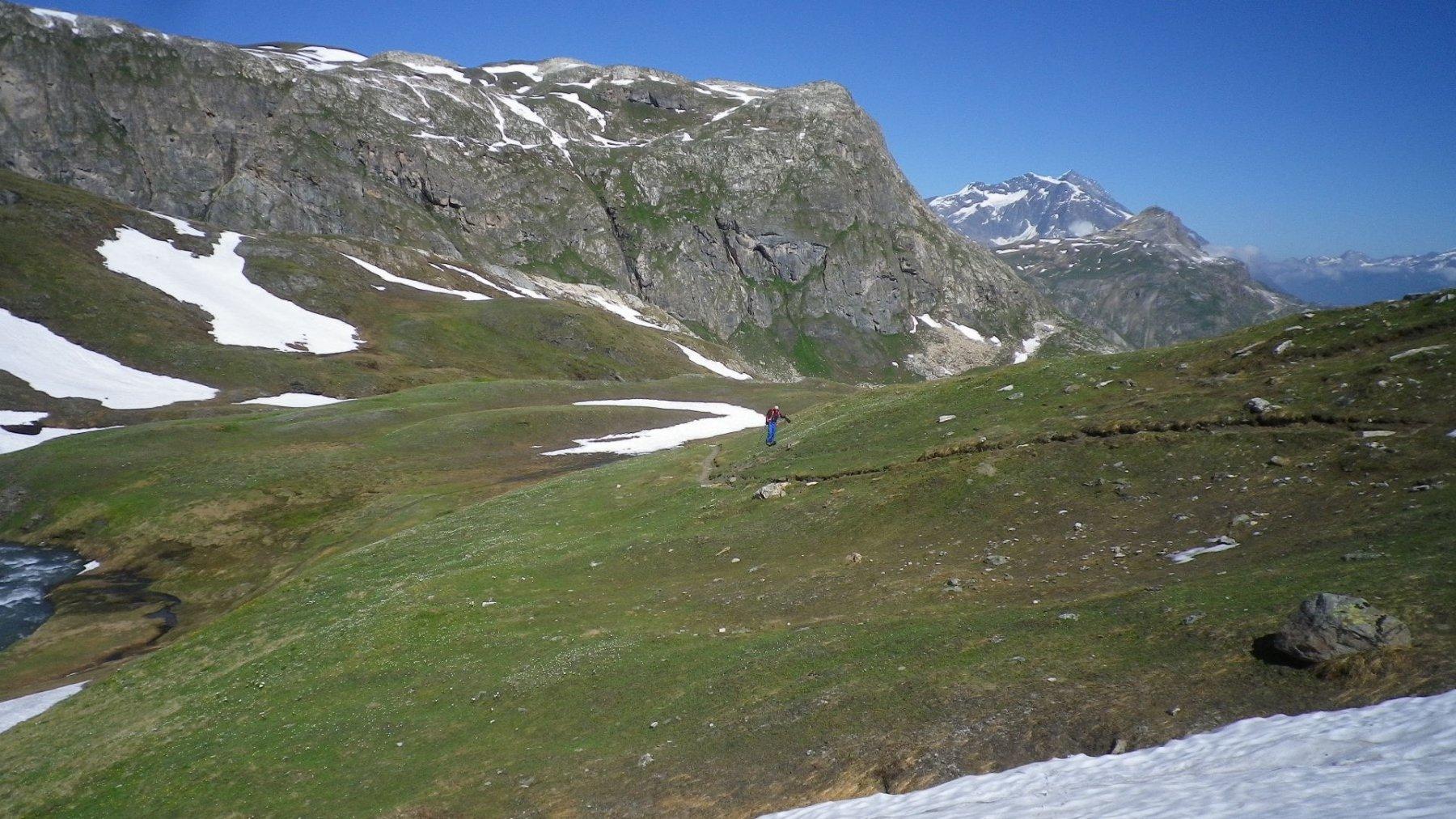 Le condizioni del Vallon des Fours poco sopra il rifugio. Belle margherite. neve continua da 2700 mt.