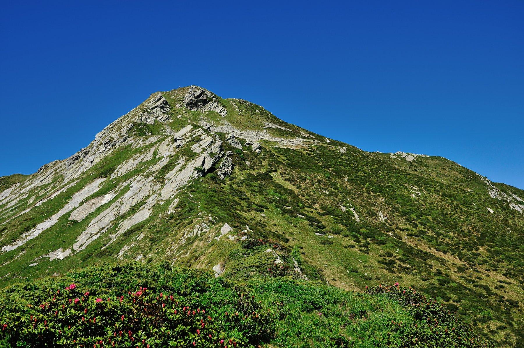 La cima e l'ultimo tratto di cresta ad inizio estate
