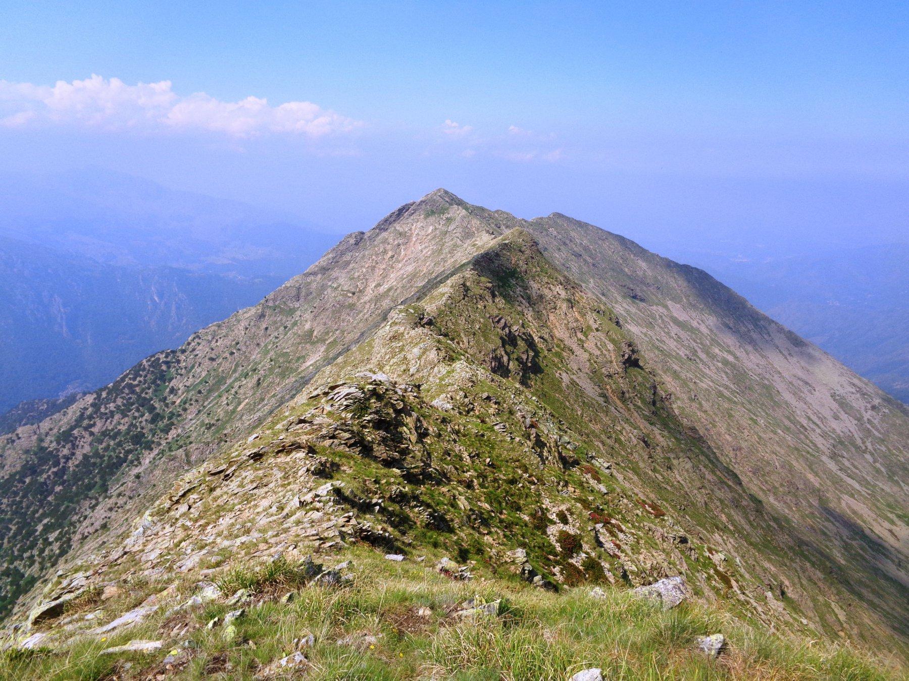 cresta erbosa oltre la Torretta