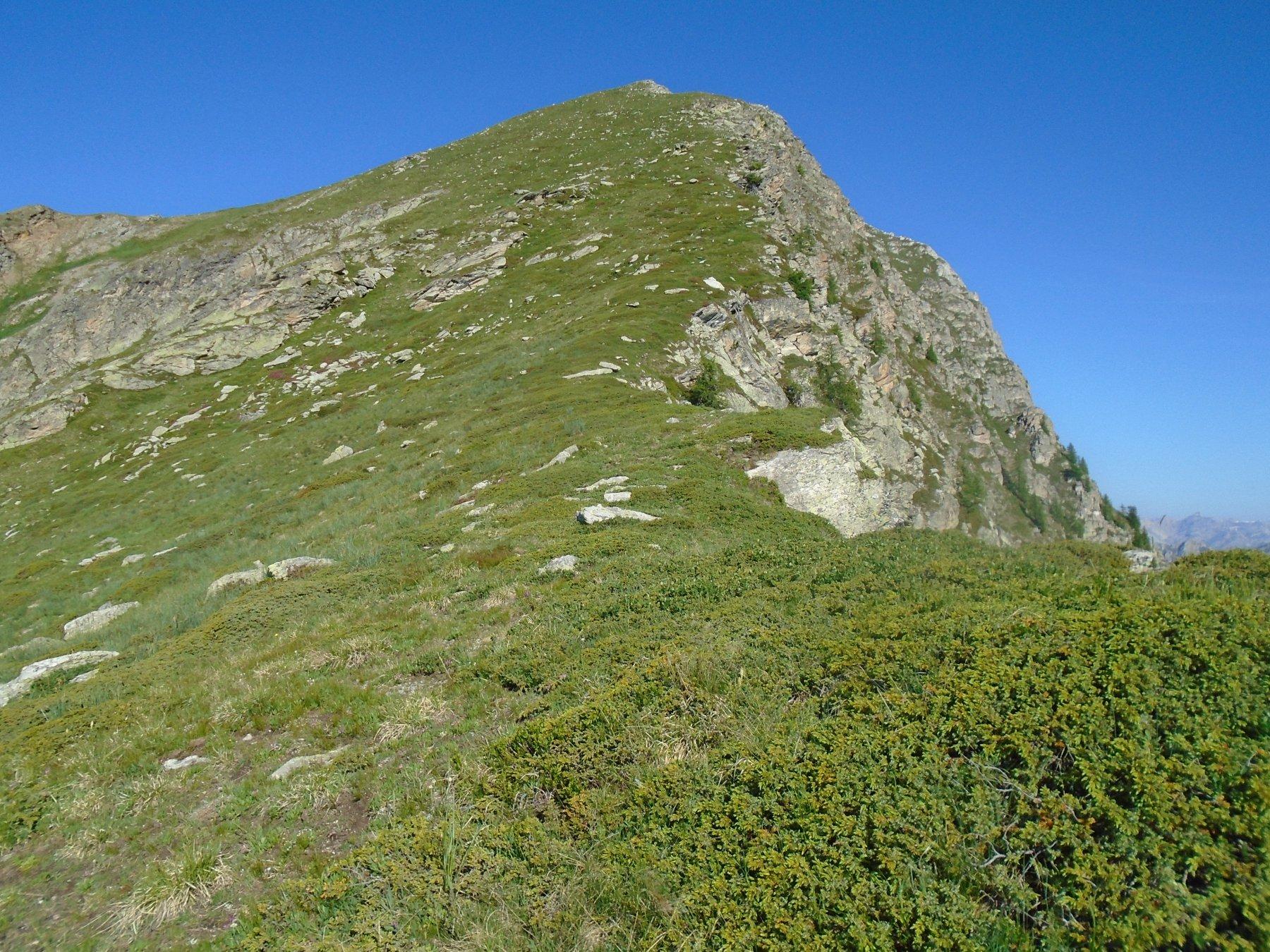 Dopo le roccette è solo un pendio ampio e poco ripido fino alla quota 2689