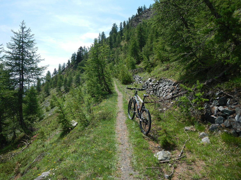 il bel sentiero, ciclabile, della parte alta