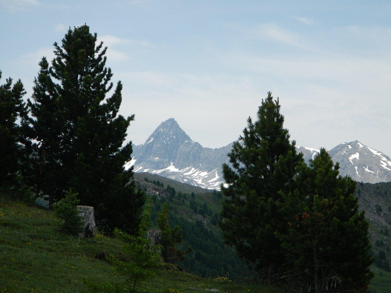 dal colletto vista sul Pic de Rochebrune