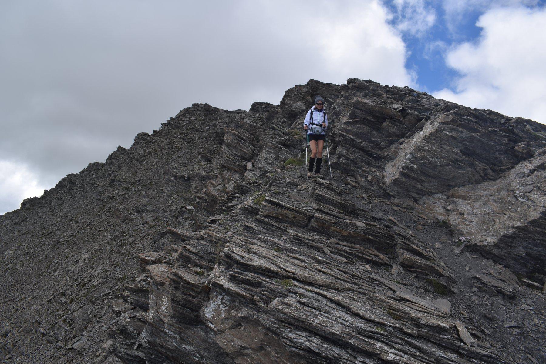Gran Queyron e Cima Frappier da Bout du Col, anello 2017-07-02