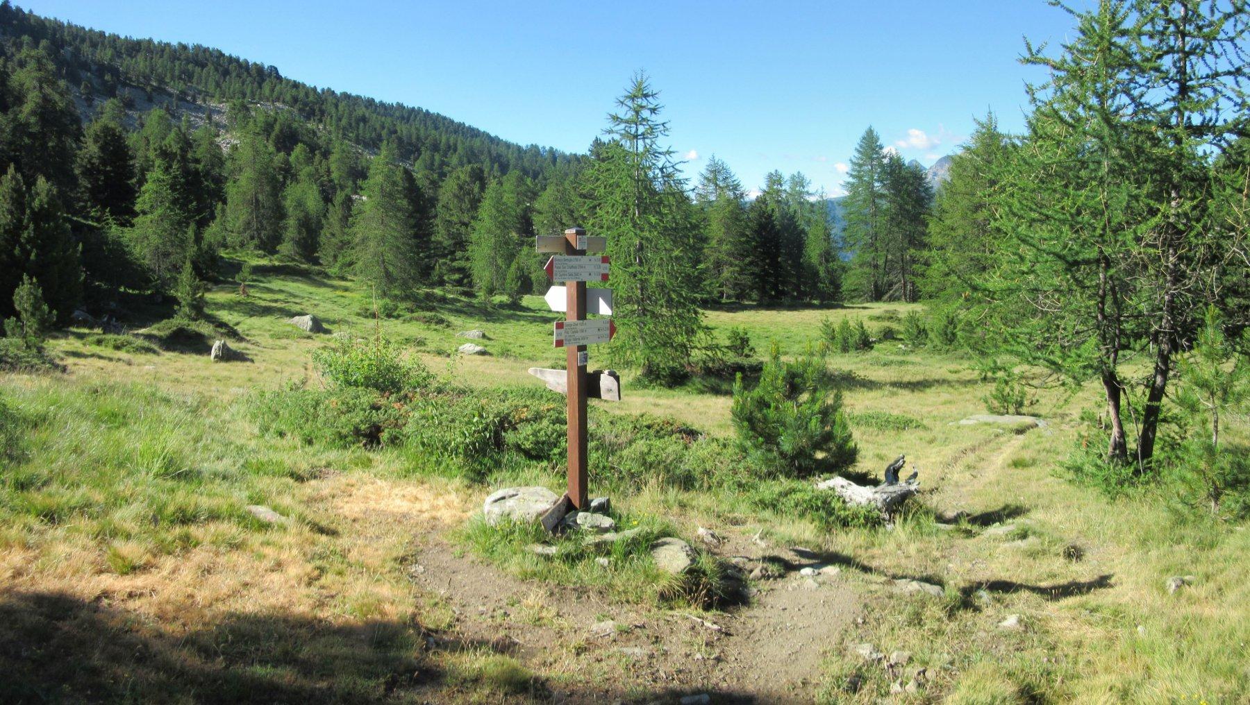 Pian Meyer e bosco di Alevè