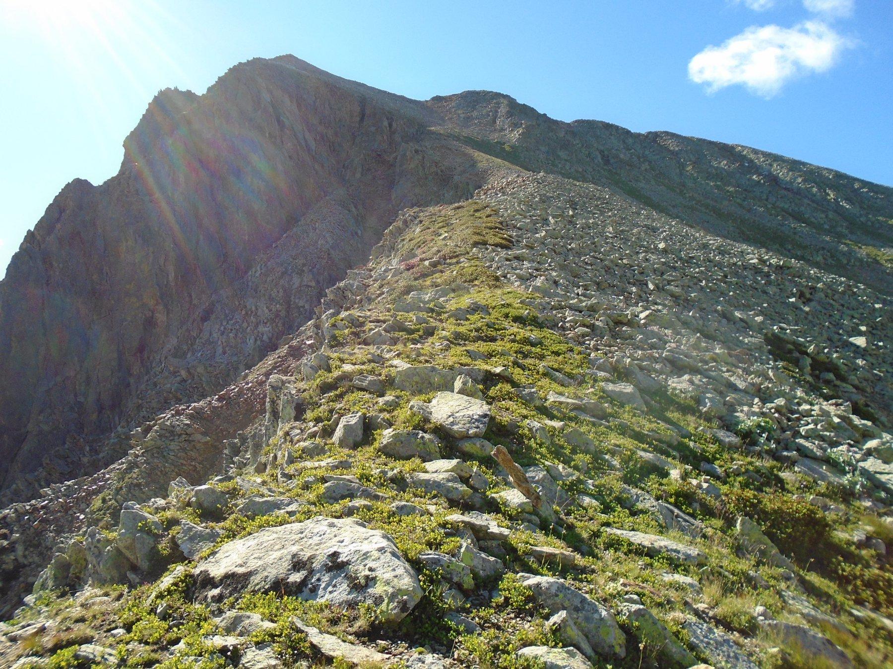 Sulla cresta: al centro in alto la punta principale, a sx la punta nord