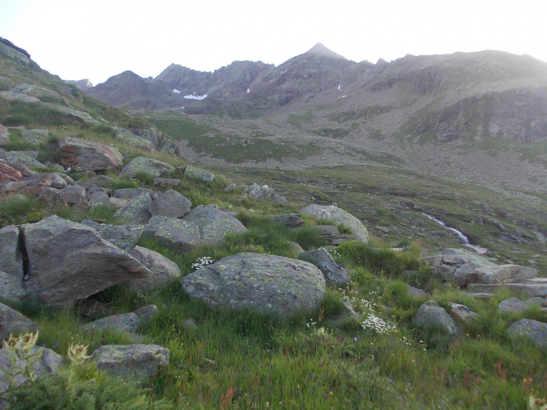Il Torrione Rosso e i 3 Corni dall'Alpe Testanera