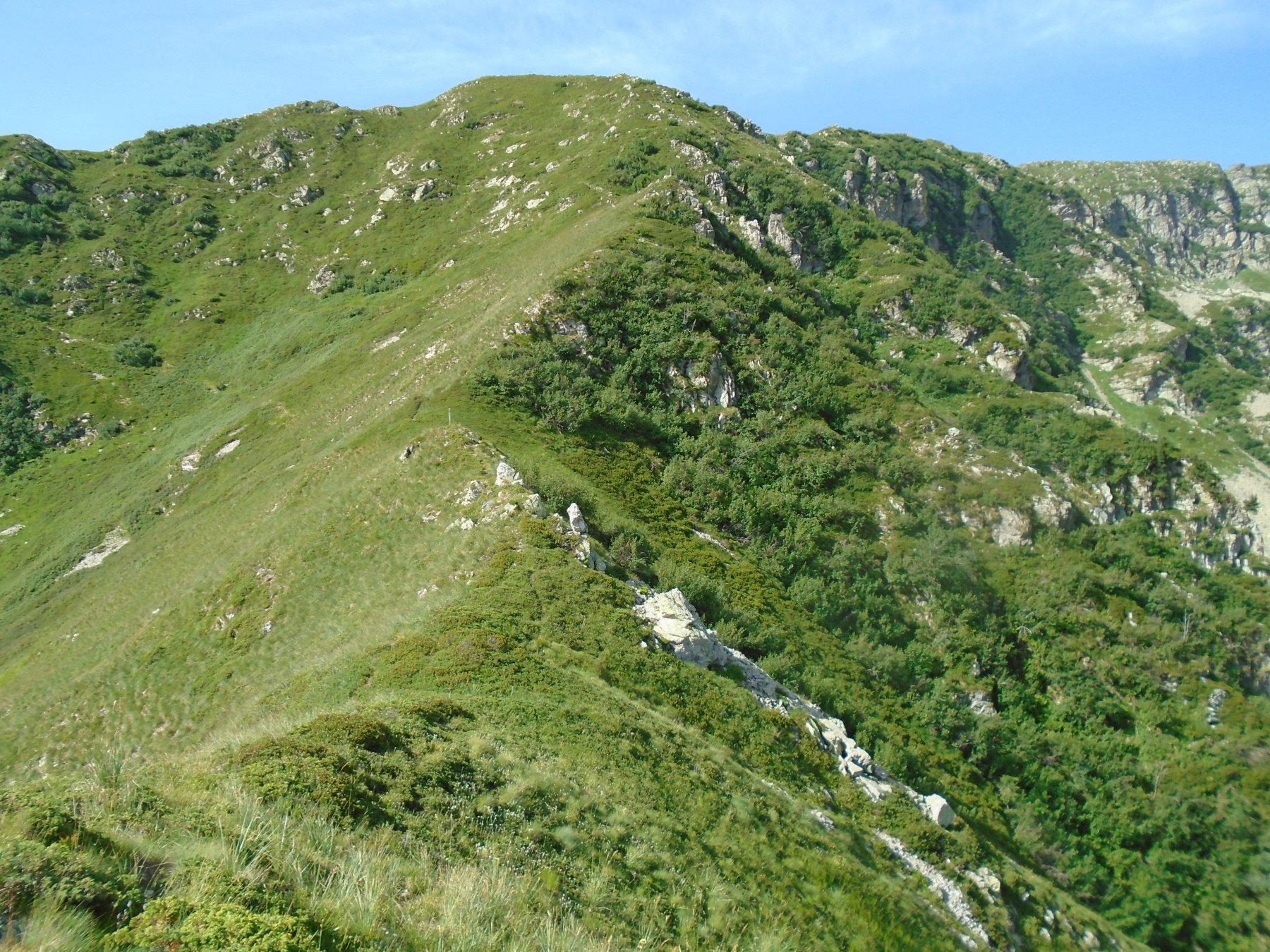 Sguardo indietro su quota 2261 e sulla parte alta della cresta