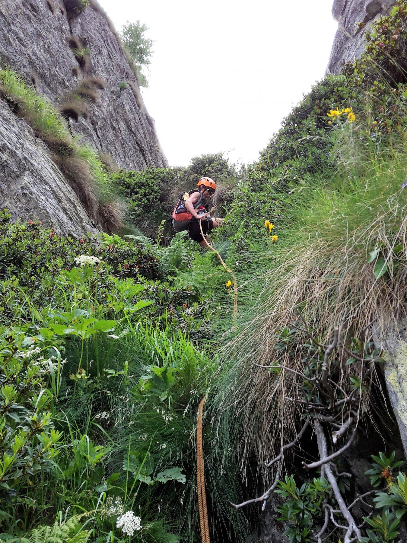 seconda doppia consigliata fra gli arbusti del canalone