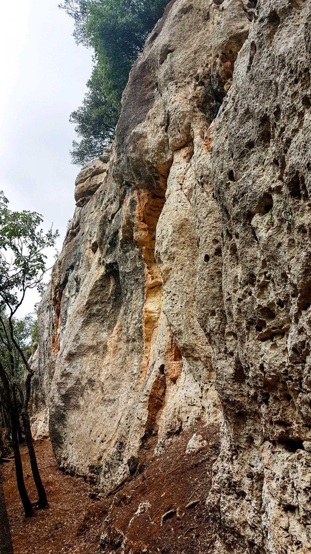 Falesia del Mammut