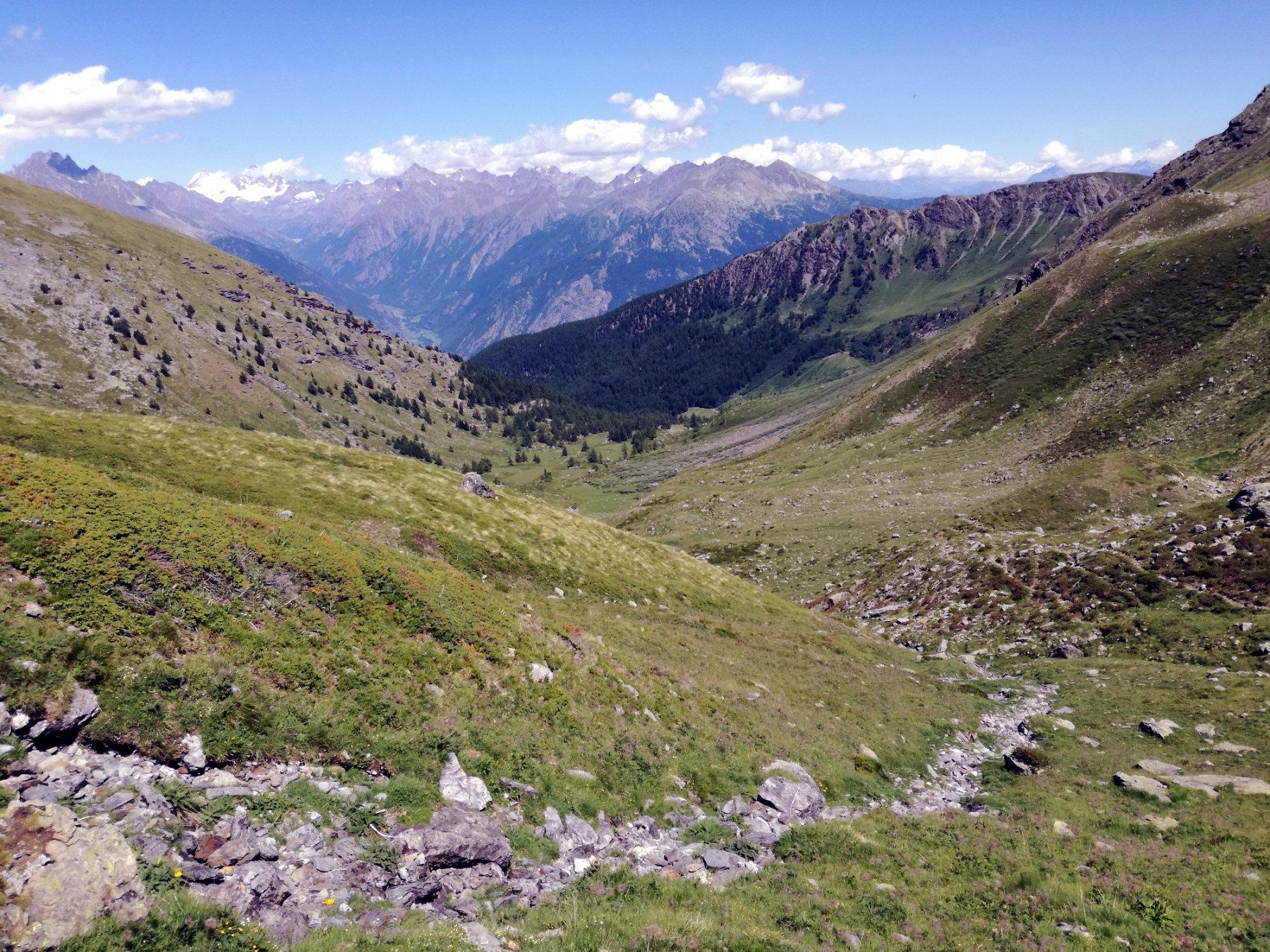 La parte alta della Comba d'Ars, prima di trovare le tracce di poderale che si addentrano nel bosco e perdere i sentieri