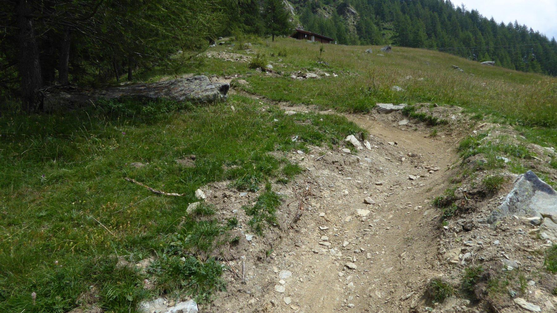 Fra i due alpeggi Ciavanassa, il sentiero è diventato così!