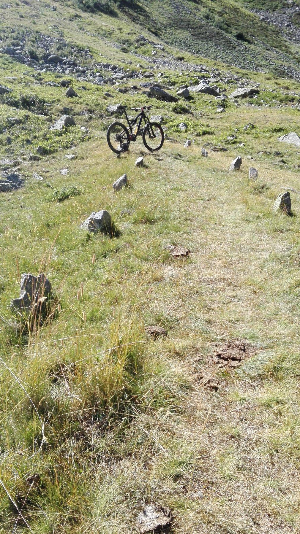 i ciciu che costeggiano il sentiero... molto utili!