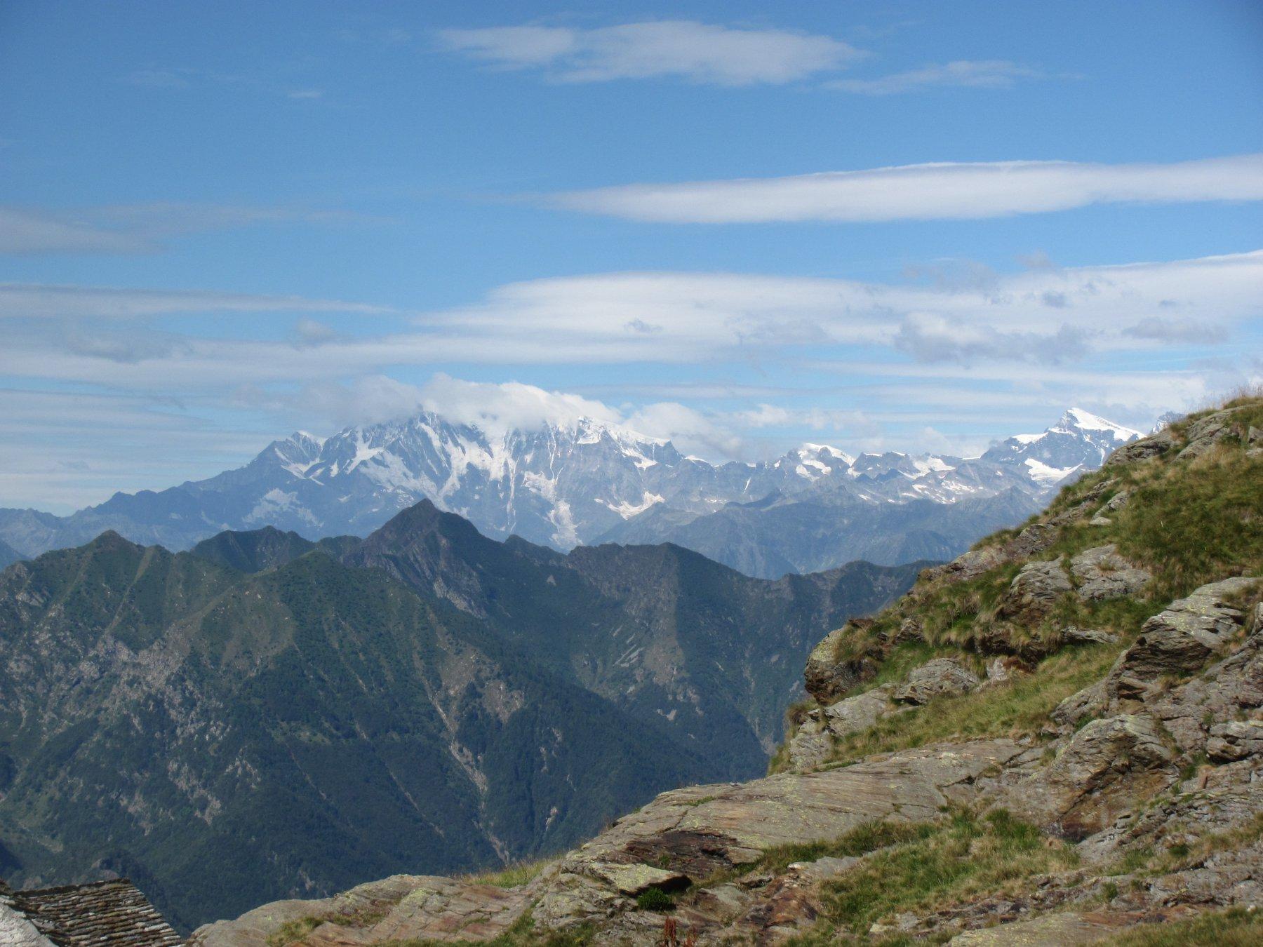 panorama verso il Rosa dall'Alpe Scaredi