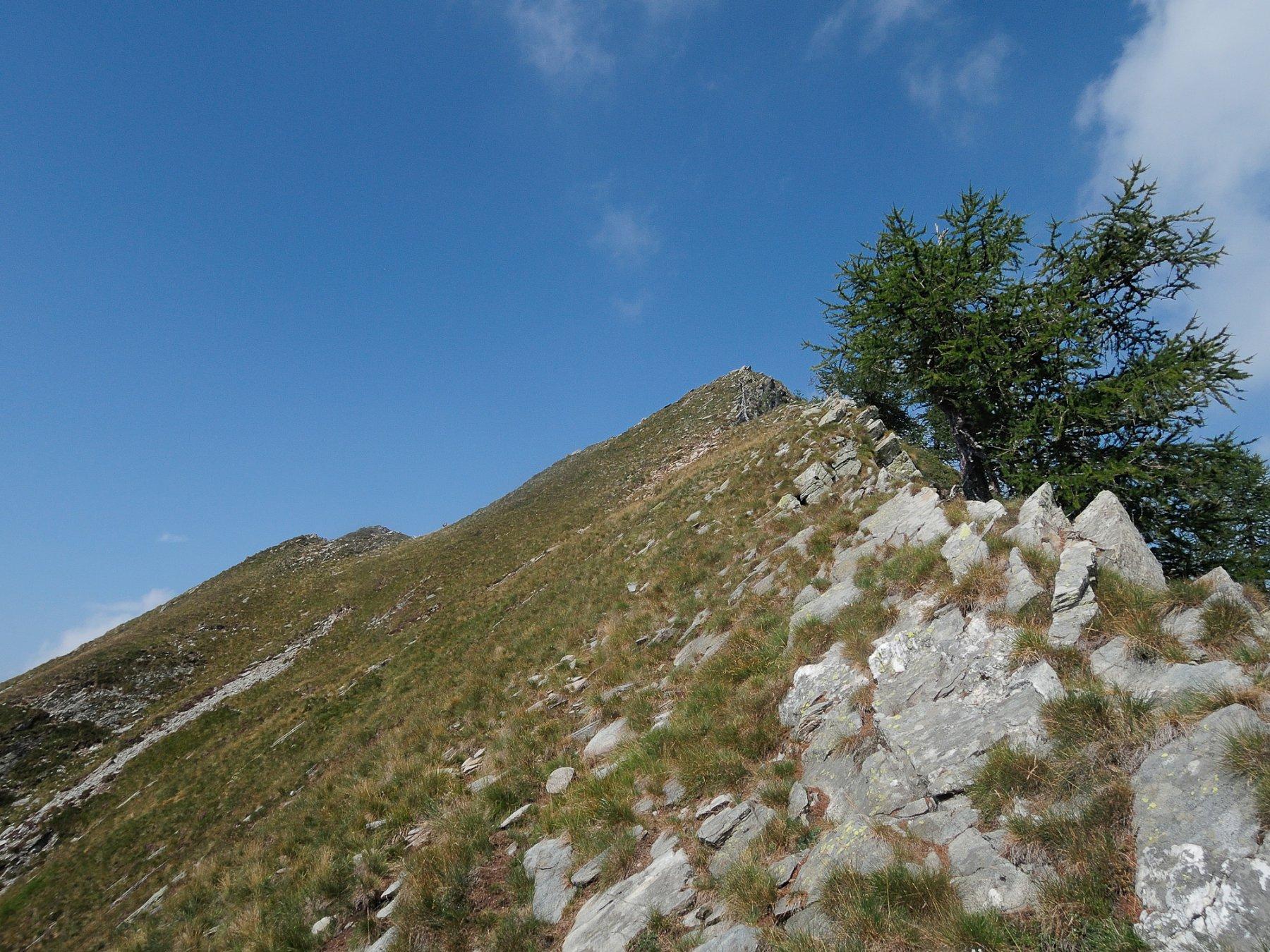 Ultima rampa per la cima del Margineta