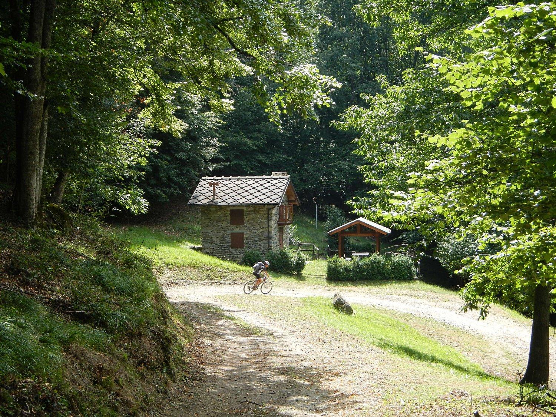 pista forestale nel Bosco Nero