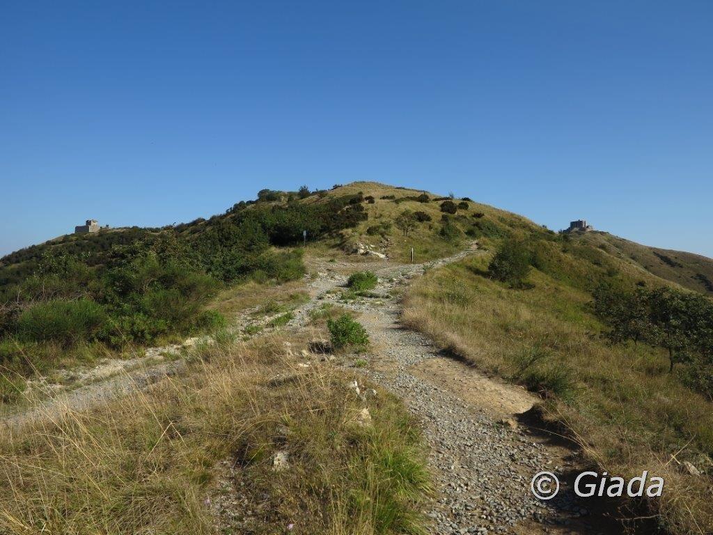 Sul crinale verso il Forte Puin, uno sguardo indietro