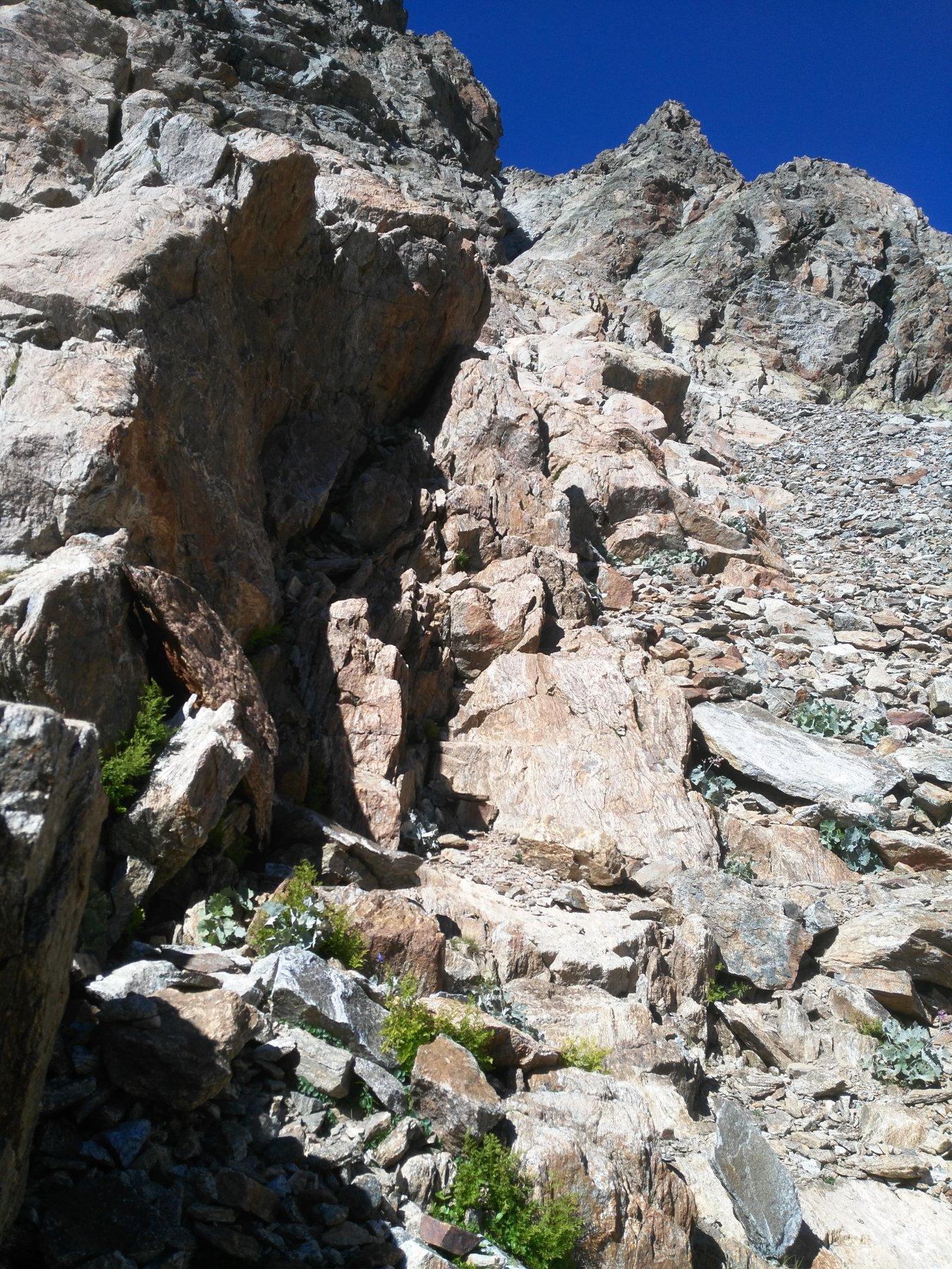 più o meno dopo le rocce sulla sx parte la cengia
