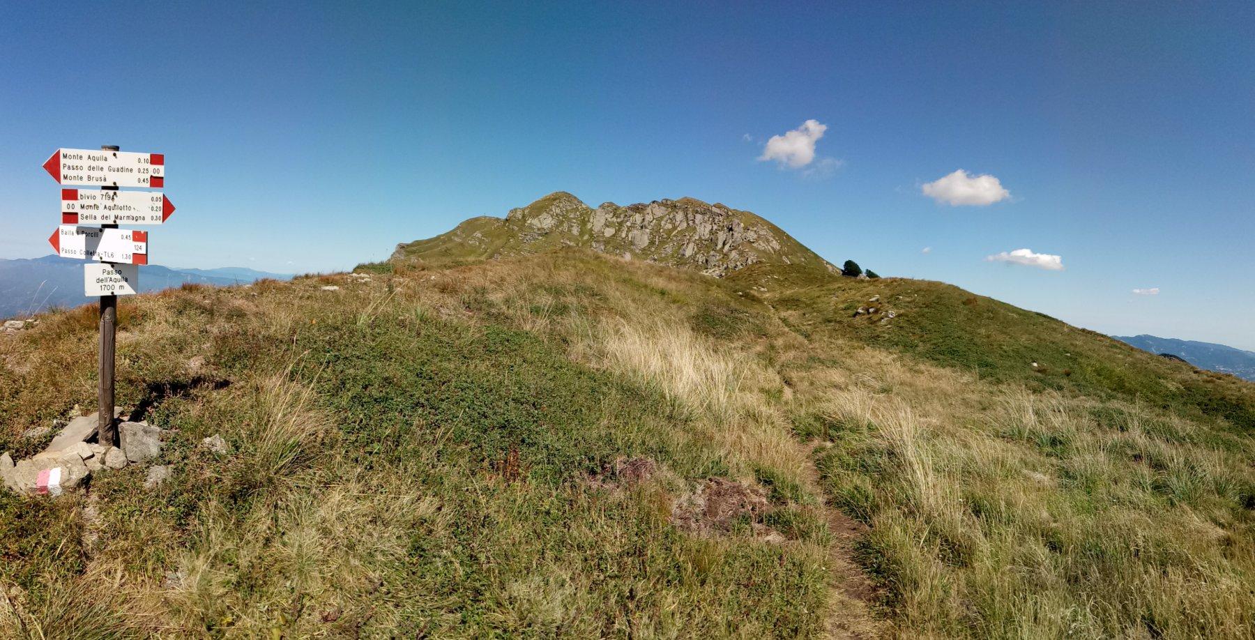 Marmagna (Monte) dal Passo dell'Aquila, per il Monte Aquilotto, il Monte Marmagna, la Sella del Braiola, anello 2017-08-16