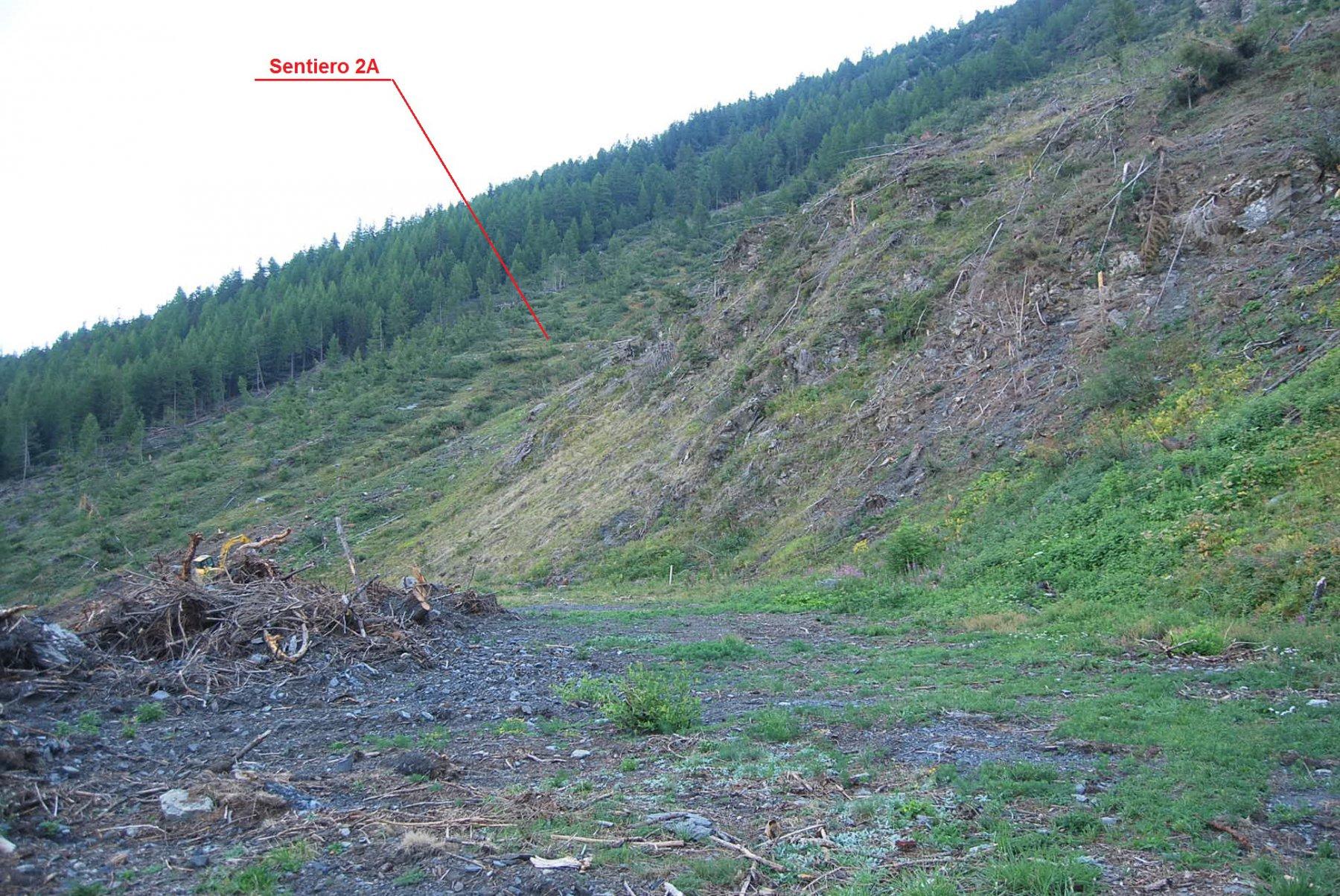 """La radura sul sentiero blu """"Salini"""", una volta discarica della miniera, oggi esposta alle frane."""