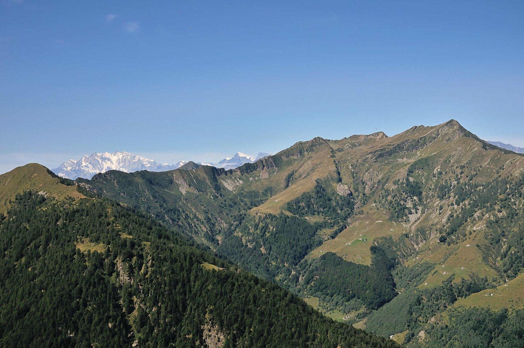 Monte Rosa e Valle del Basso visti dalla Testa del Mater
