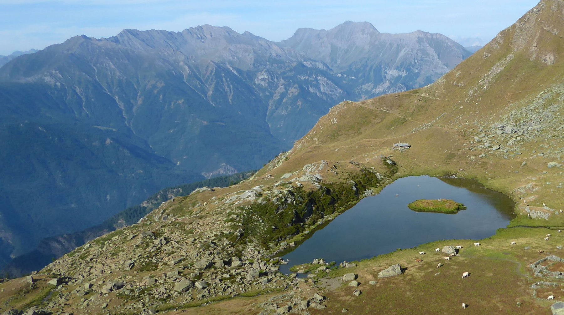 il lago laus