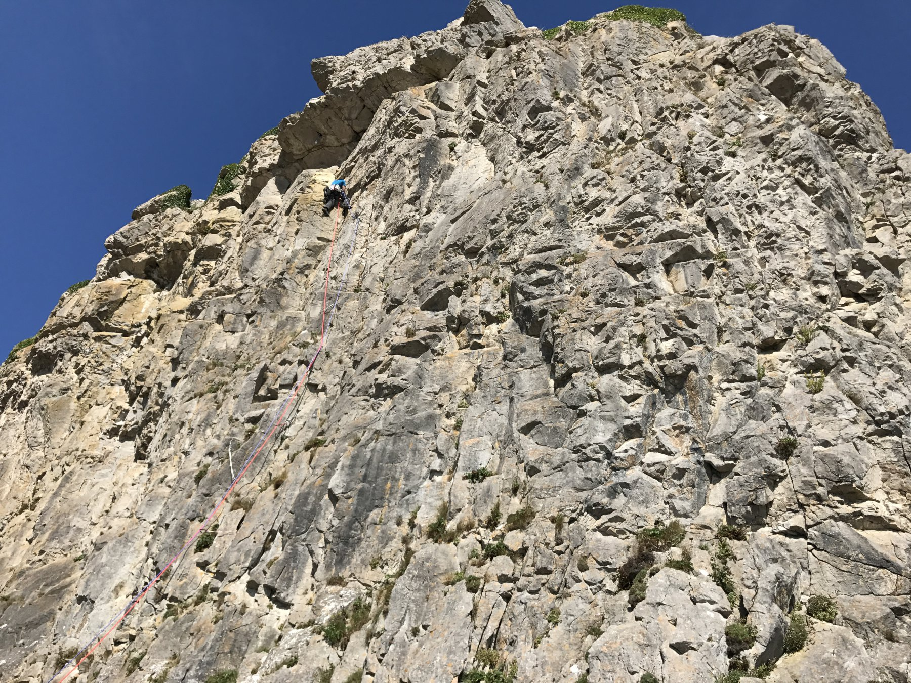 Fall Bay Lewes Castle 2017-08-27
