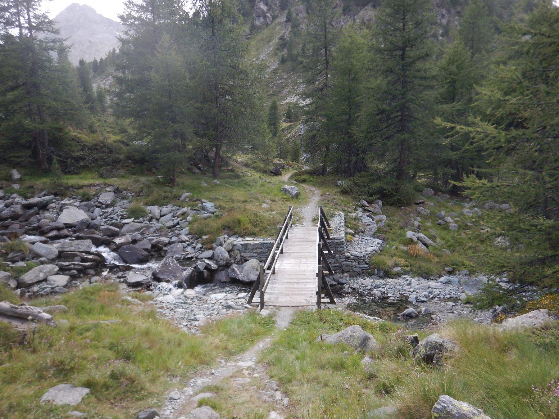 lungo il sentiero 13